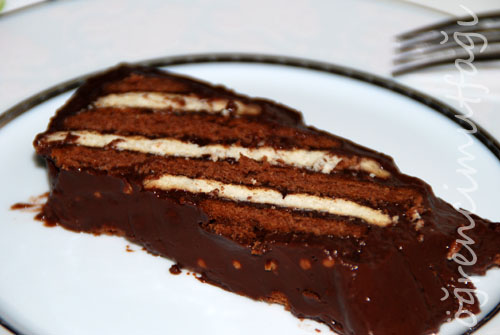 iki-renkli-biskuvili-pasta